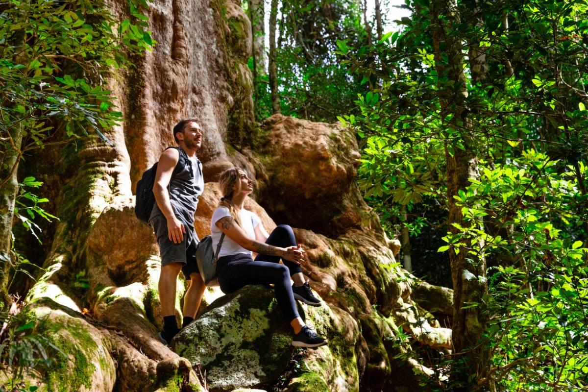 Australie, au cœur de l'aventure